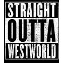 سویشرت سریال Straight Outta WestWorld