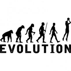 تیشرت Basketball Evolution