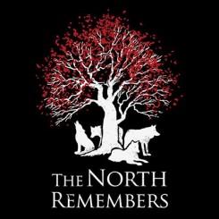 تیشرت دخترانه The North Remmember
